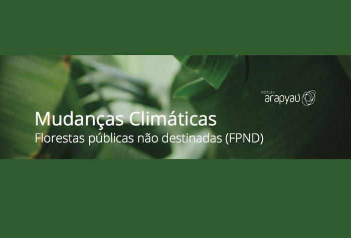 Capa Mudanças climáticas: florestas públicas não destinadas (FPND)