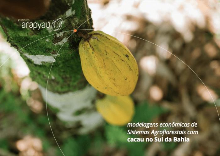 Modelagens econômicas de Sistemas Agroflorestais com cacau no Sul da Bahia