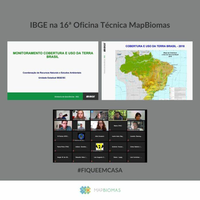 MapBiomas define plano 2020