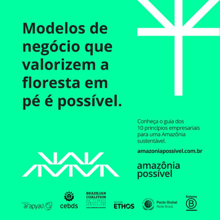 modelos de negócio que valorizem a floresta em pé é possível